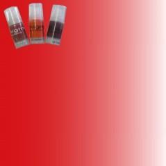 Enigma χρώμα μόνιμου μακιγιάζ για Χείλη 41 Rouge 15ml